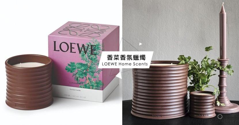 LOEWE「香菜蠟燭」引熱議,超特殊11款「植物居家香氛」妳愛哪一味?
