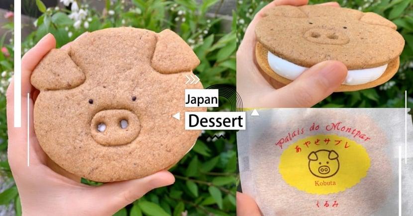 Twitter熱搜!日本菓子工坊推出「小豬棉花糖夾心餅」酥脆餅乾+軟綿綿口感,超級療癒的♡