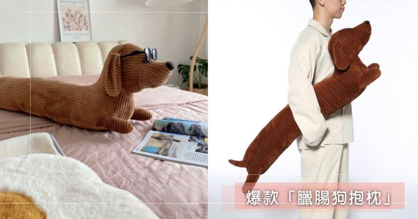 超療癒!人氣爆款「臘腸狗抱枕」120公分身長+小短腿爆萌神還原,拿來墊腰、饋腳超舒服~
